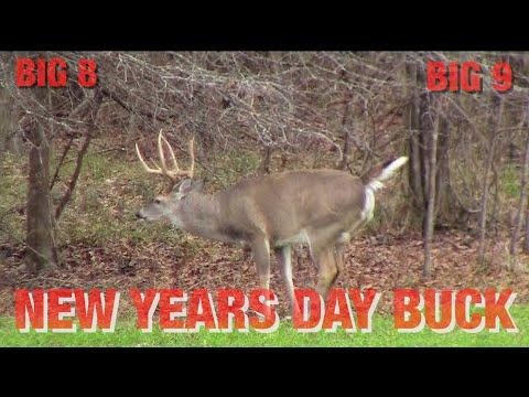 Two GIANT Alabama Bucks, Pre-Rut In Alabama | LONGTINE OUTDOORS