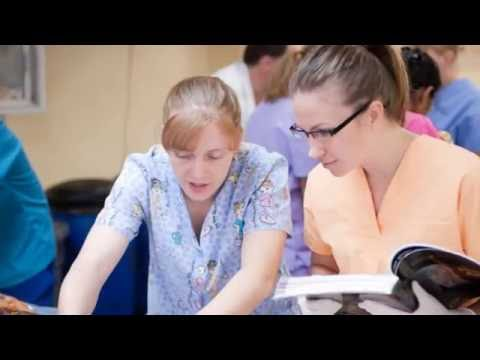 Why Choose Saba University for Medical School