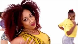 SHISHA DANCEHALL QUEEN/ DANCE PROMO 2016 / BANG LA DECKS - AIDE