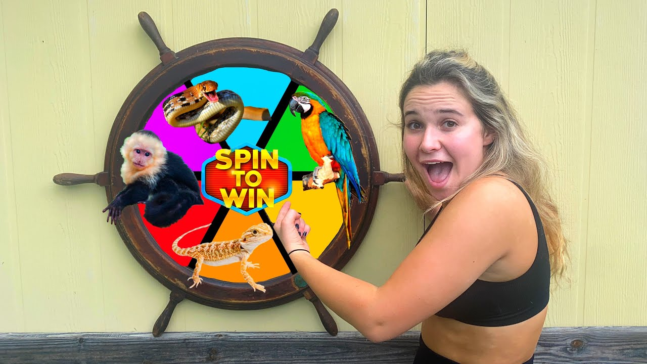 SPIN THE WHEEL! BUYING WHATEVER ANIMAL IT LANDS ON!