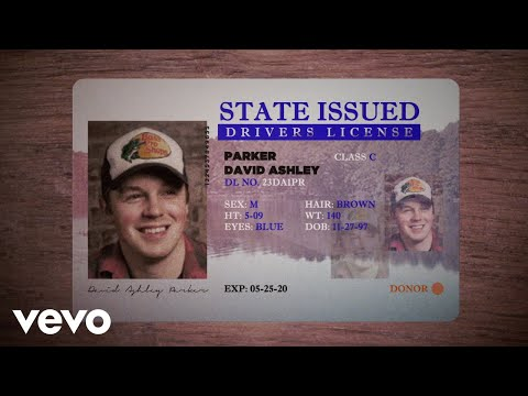 Travis Denning - David Ashley Parker From Powder Springs (Lyric Video)