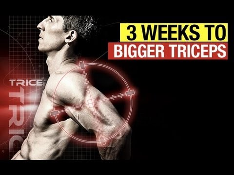 Kick-Start Your Triceps Size Using These 3 Tips