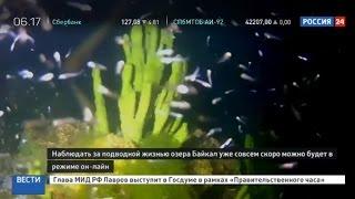 Глубинный Байкал выходит в онлайн