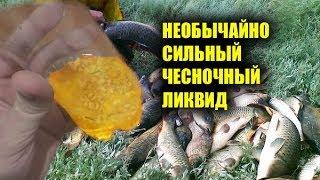 НА ТАКОЙ ЧЕСНОК РЫБАЛКА КАК СКАЗКА чеснок для рыбалки чеснок для карася секретная прикормка