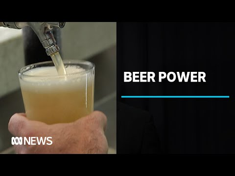 Undrunk beer powers waste water treatment plant | ABC News