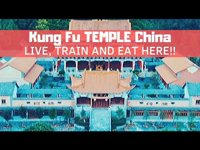 Kung Fu School in China - 1 Month Experience!