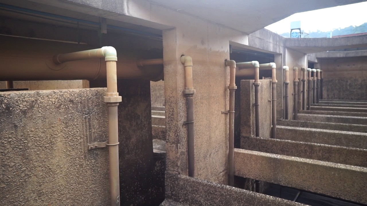 Filter backwash with surface wash as scouring system ...
