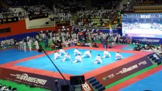KTigers Taekwondo Aerobics Hanmadang 2014