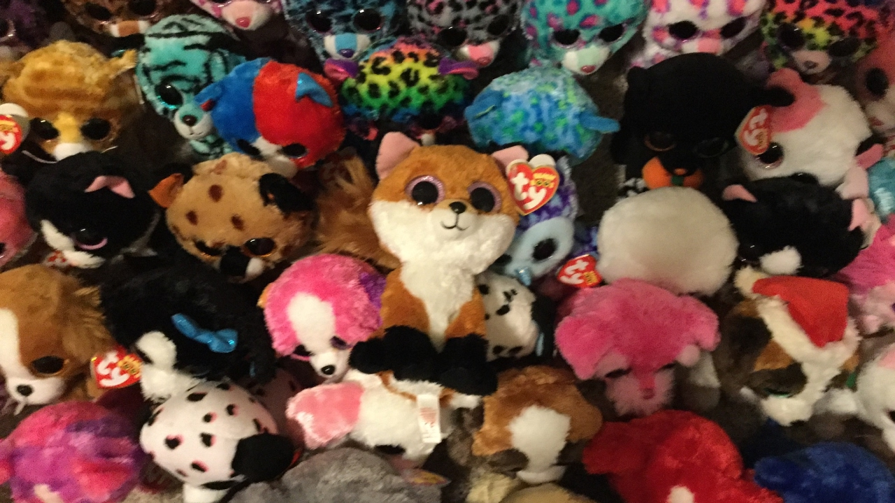 e7e0e942c29 Beanie Boo Collection 250+