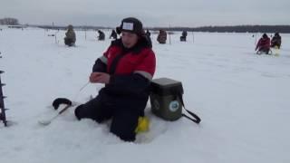 Льодове побоїще 2017, зимова риболовля.