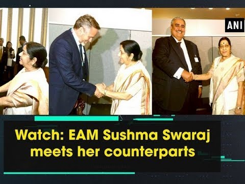 Watch: EAM Sushma Swaraj meets her counterparts - New York News
