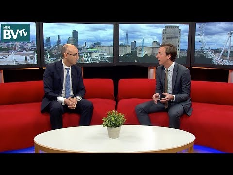 BVTV: deciphering the differences between green bonds, impact investing and ESG