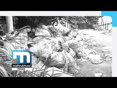Kozhikode City And Fight Against Communicable Diseases| Mathrubhumi News