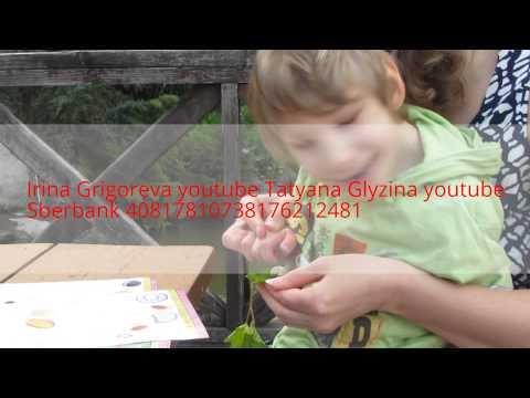 Видео Три пирога москва