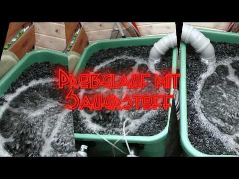 Teichfilter f r den gartenteich fischteich pond filte for Fischteich wasser reinigen