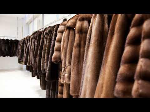 Как почистить искусственный мех на куртке в домашних условиях