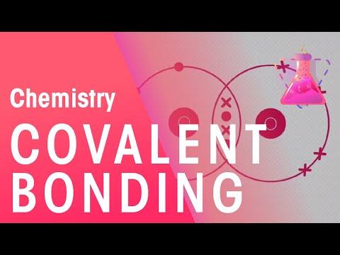 Covalent Bonding of Hydrogen, Oxygen & Nitrogen | Chemistry for All | The Fuse School