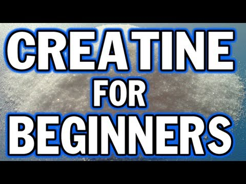 creatine-for-beginners---things-you-need-to-know