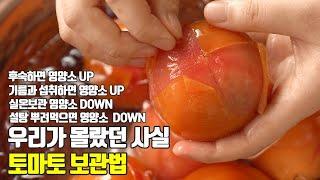 우리가 몰랐던 사실 토마토 보관법 영양소 200% 섭취…