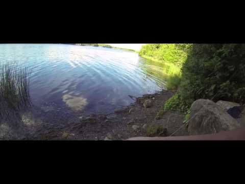 WTF? Island Lake Conservation Area, Orangeville, ON
