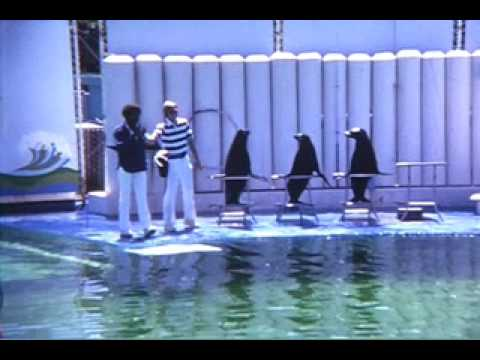 Marine World  Redwood City 1972