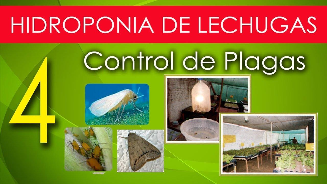 Controller 4 Sistema de Cultivo Hidropónico GHE Kits y sistemas de crecimiento