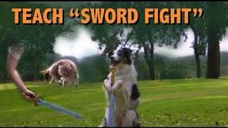 Epic Dog Trick: Sword Fighting Tutorial