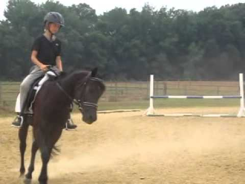 Hannah and Paela in lesson with Mogie