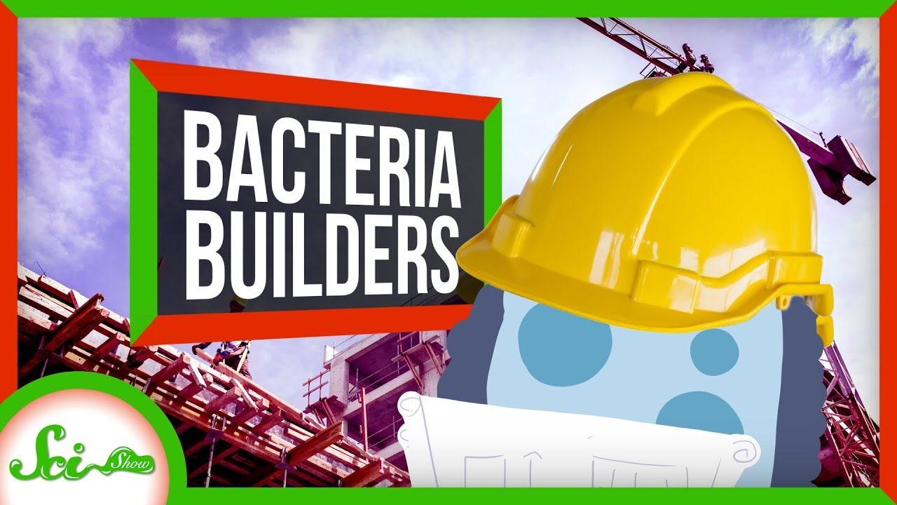 The Secret to Super Strong Concrete Is... Bacteria?