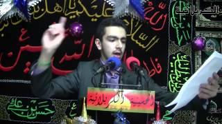 Ali Ali Mawla Ali | Khadim Ahlulbayt Ala Nouhehkhan | Birth of Imam Al Ridha (as) 1434