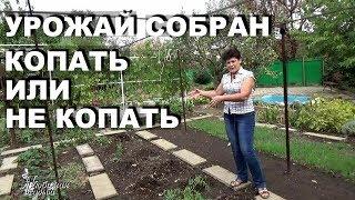 видео Нужно ли перекапывать огород осенью?