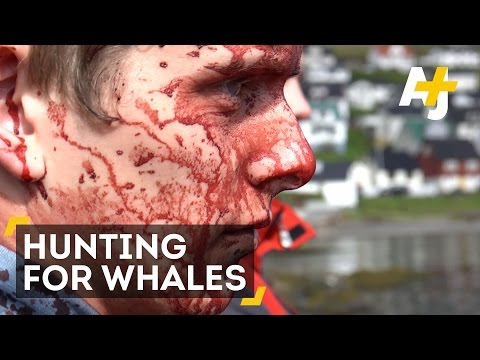 A 1,000-Year-Old Whaling Tradition Is Under Threat