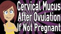 hqdefault - Back Pain Cervical Mucus