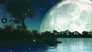 Relaxing Sleep Music - [try listening for 3 minutes] fall asleep fast | deep sleep