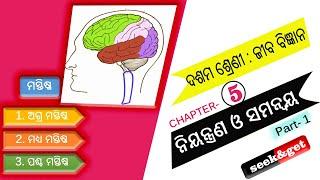 Class 10th Life science unit 5 in odia : ନିୟନ୍ତ୍ରଣ ଓ ସମନ୍ଵୟ : seek&get