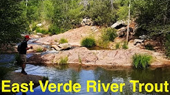 Trout Fishing Arizona's East Verde River