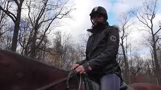 Уроки верховой езды. Галоп. Упражнения для всадника.