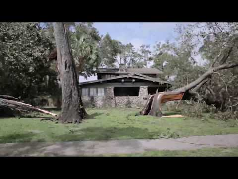 Hurricane Irma Aftermath Lakeland Florida