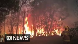 8,000 Told To Evacuate Amid Catastrophic Bushfire Threat In Queensland | ABC News
