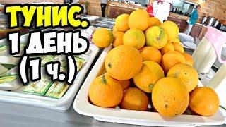 Тунис || 1 день (1 ч)  || Чем кормят в отелях Туниса на завтрак || Обзор территории Delphin el Habib
