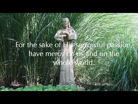 Divine Mercy Chaplet Prayers in my summer garden || A mom's moment to pray