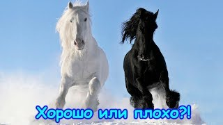 """Притча """"К лучшему или к худшему"""".  (02.18г.) (рел.) Семья Бровченко."""
