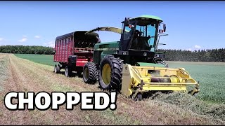Custom Chopping HAY!  (FIRST CUT HAY 2020 - PART TWO): Vlog 306