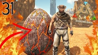 JE CAPTURE ENFIN UN ŒUF DE WYVERN ! | ARK: Scorched Earth ! #Ep31