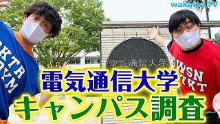 女子が少ないって本当?電気通信大学キャンパス調査!【wakatte TV】#556