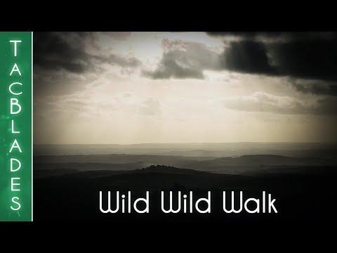 Wild Wild Walk - Dartmoor