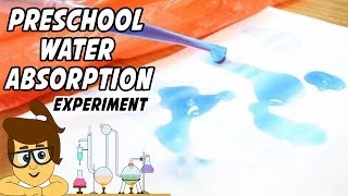 Water Absorption Experiment