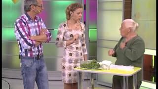 Мокрица - полезный сорняк для красоты и здоровья