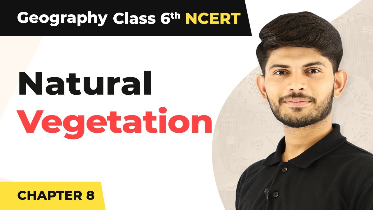 Natural Vegetation - India: Climate, Vegetation, And Wildlife   Class 6 Geography