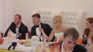 Ведущий Александр Жуков - Свадьба